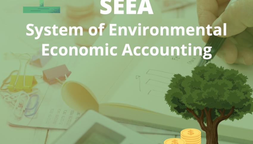 Jenseits des BIP – mit SEEA ganzheitlich(er) bilanzieren
