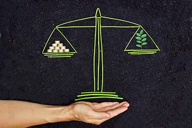 Übergang zur ökosozialen Marktwirtschaft